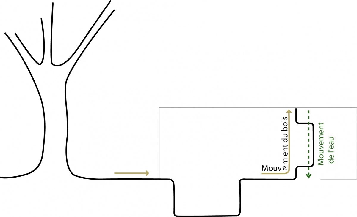 BASSIN DE NAGE : FGAUDIN-NEMO-BASSIN-PISCINE-BRETAGNE-MOUVEMENTS